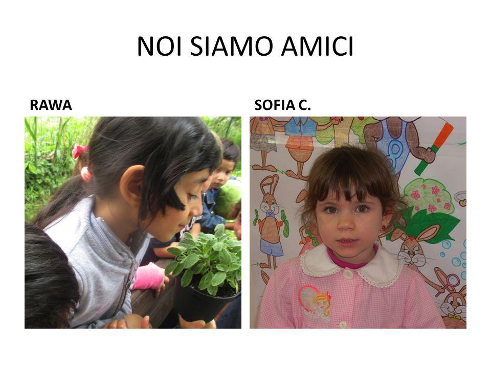 NOI SIAMO AMICI RAWA SOFIA C.