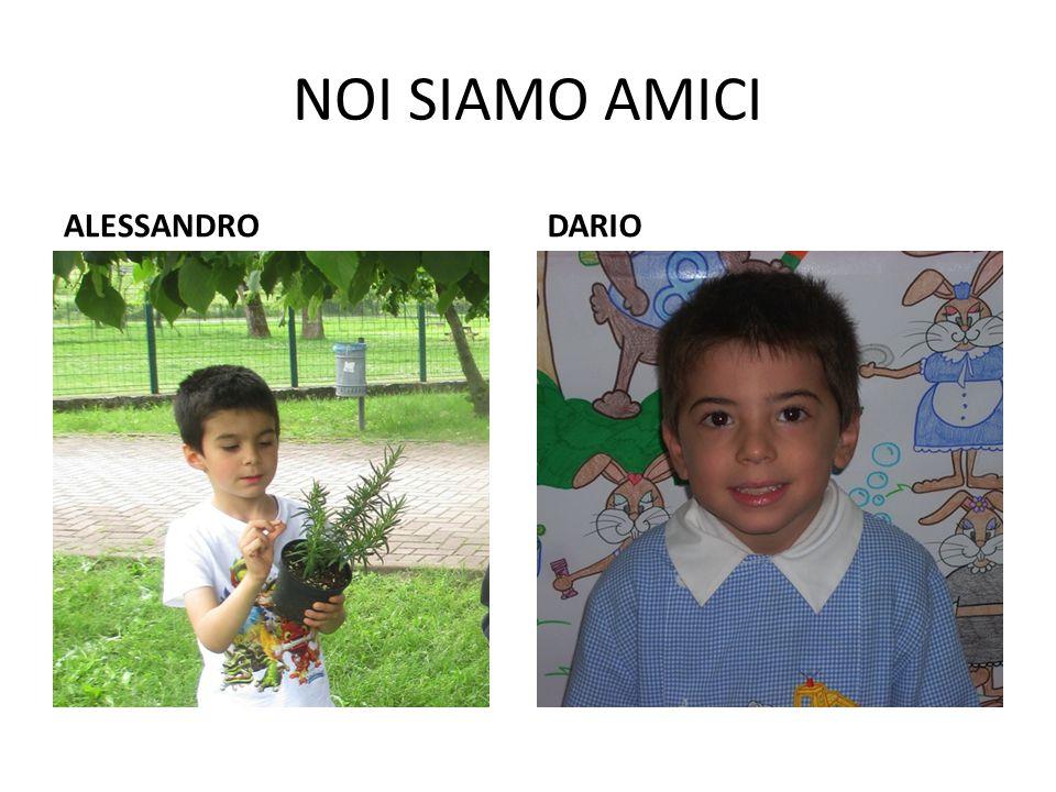 NOI SIAMO AMICI ALESSANDRO DARIO