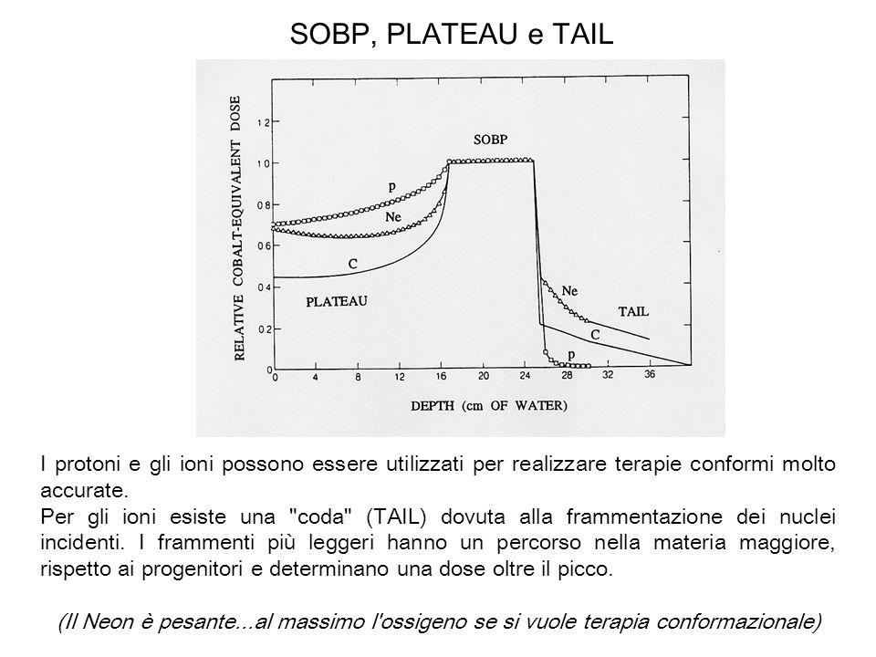 SOBP, PLATEAU e TAIL I protoni e gli ioni possono essere utilizzati per realizzare terapie conformi molto accurate.