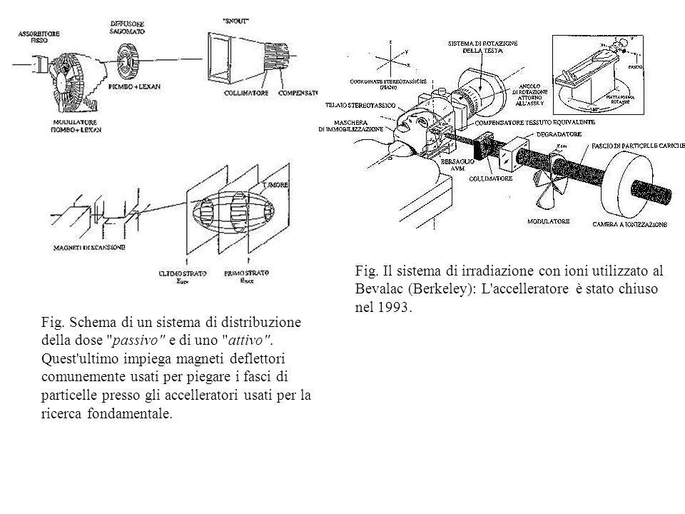 Fig. Il sistema di irradiazione con ioni utilizzato al Bevalac (Berkeley): L accelleratore è stato chiuso nel 1993.