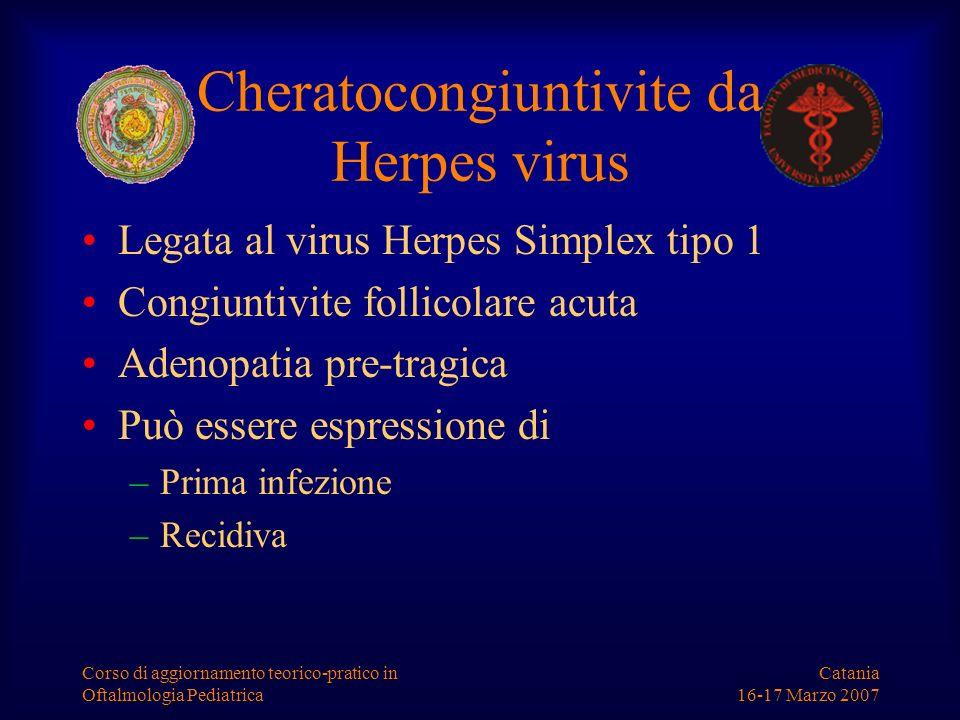 Cheratocongiuntivite da Herpes virus
