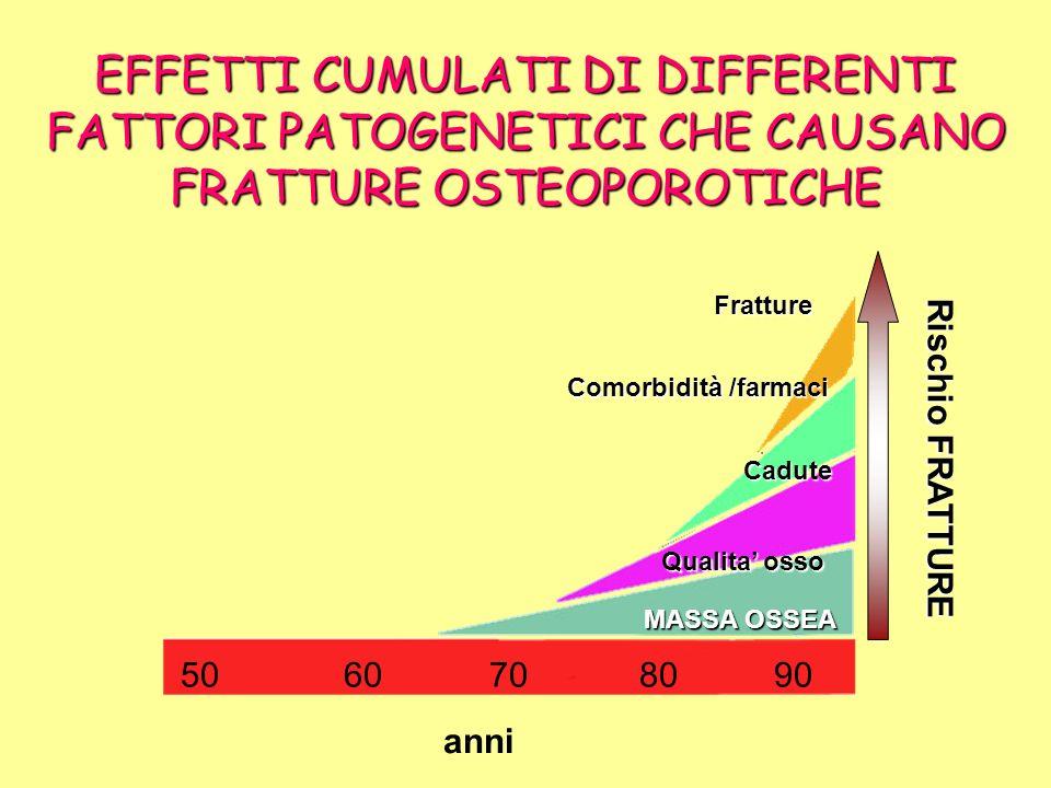 EFFETTI CUMULATI DI DIFFERENTI FATTORI PATOGENETICI CHE CAUSANO FRATTURE OSTEOPOROTICHE