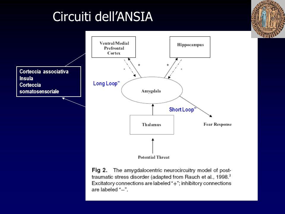 Circuiti dell'ANSIA Corteccia associativa Insula