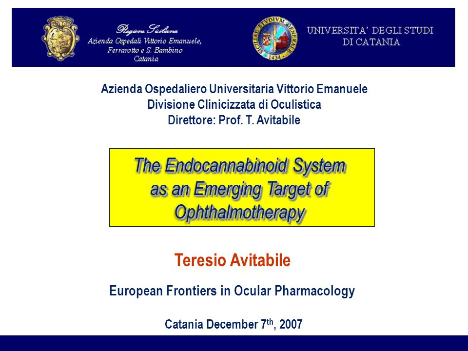 The Endocannabinoid System as an Emerging Target of Ophthalmotherapy