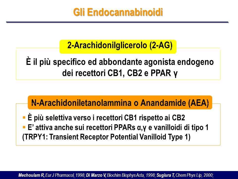 Gli Endocannabinoidi 2-Arachidonilglicerolo (2-AG)