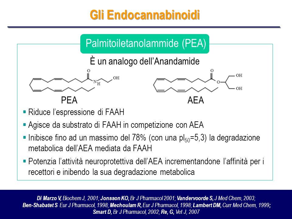 Gli Endocannabinoidi Palmitoiletanolammide (PEA)