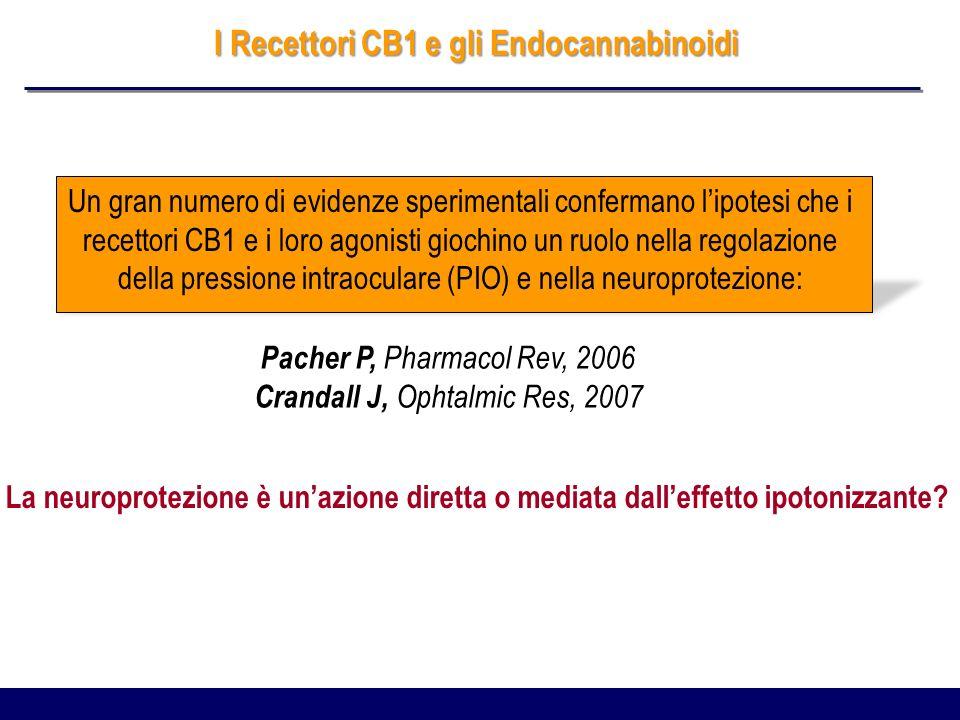 I Recettori CB1 e gli Endocannabinoidi