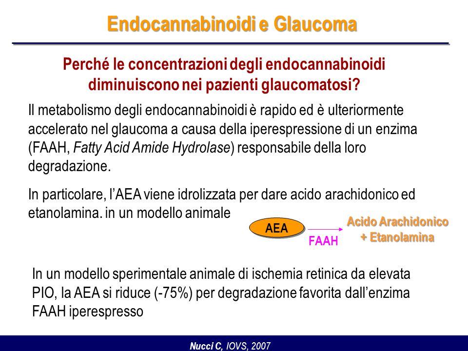 Endocannabinoidi e Glaucoma