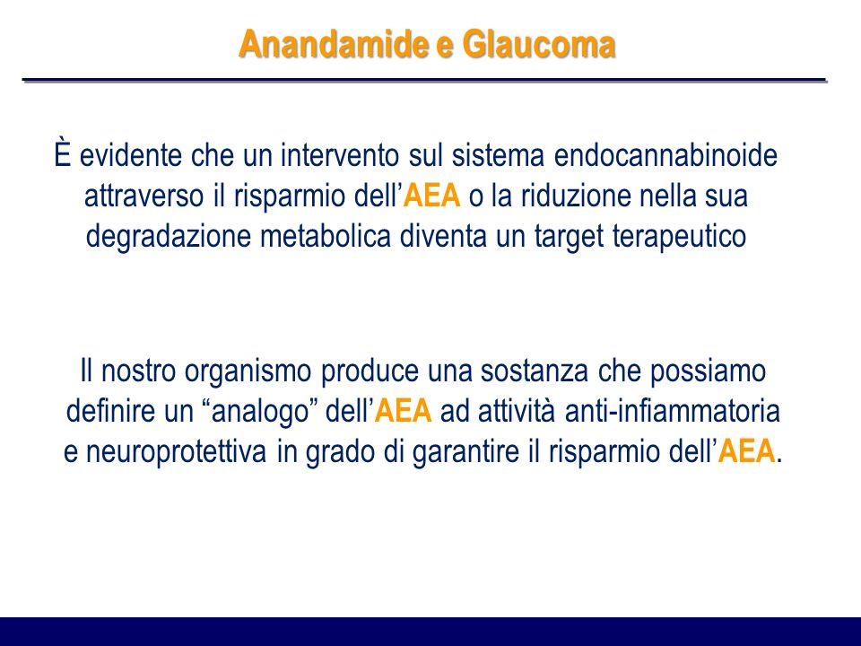 Anandamide e Glaucoma