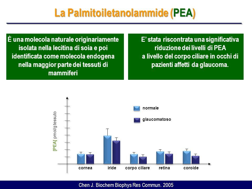 La Palmitoiletanolammide (PEA)