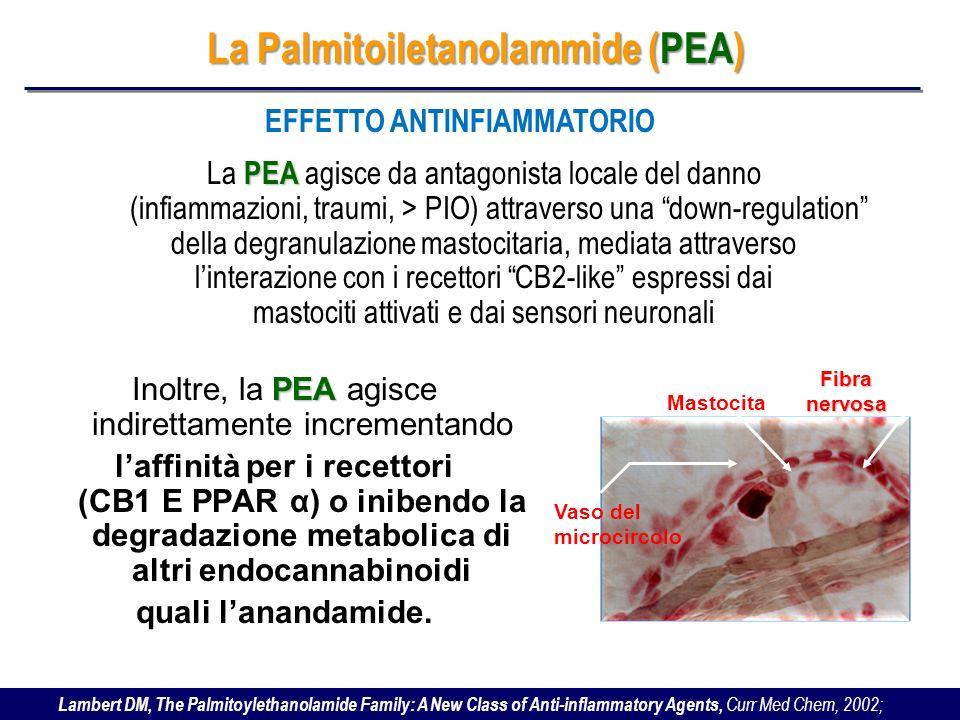 La Palmitoiletanolammide (PEA) EFFETTO ANTINFIAMMATORIO