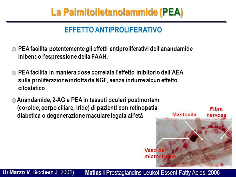 La Palmitoiletanolammide (PEA) EFFETTO ANTIPROLIFERATIVO