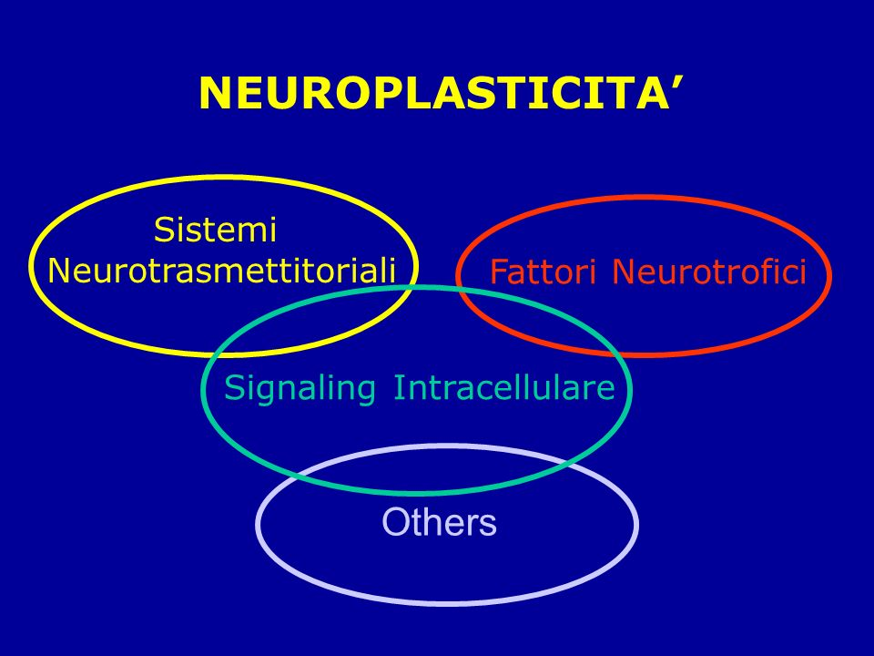 Neurotrasmettitoriali