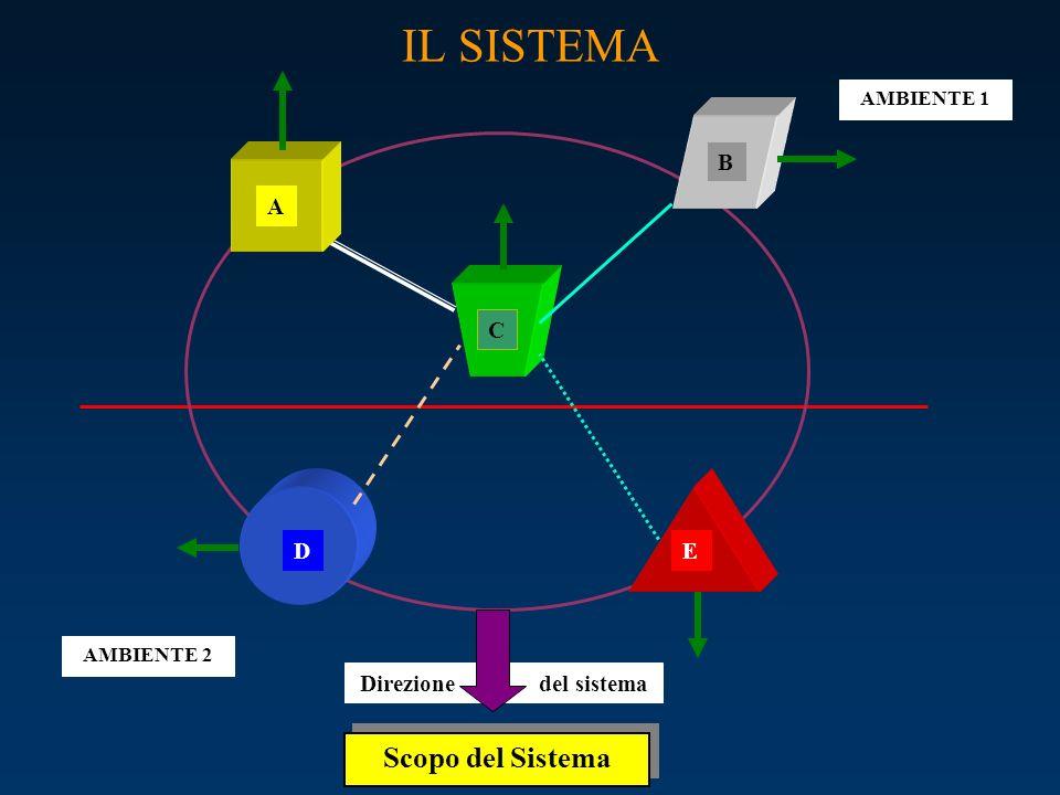IL SISTEMA Scopo del Sistema B A C D E Direzione del sistema