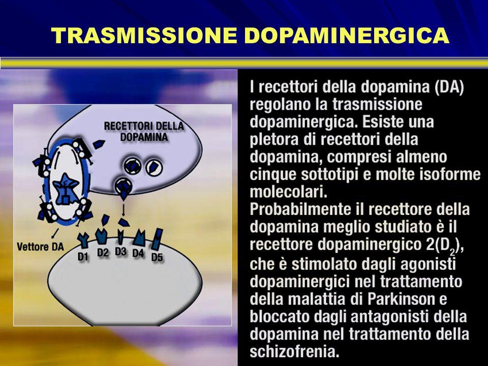 TRASMISSIONE DOPAMINERGICA