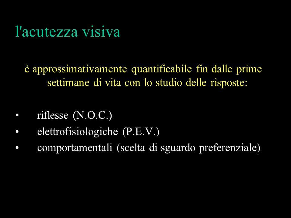 l acutezza visiva è approssimativamente quantificabile fin dalle prime settimane di vita con lo studio delle risposte: