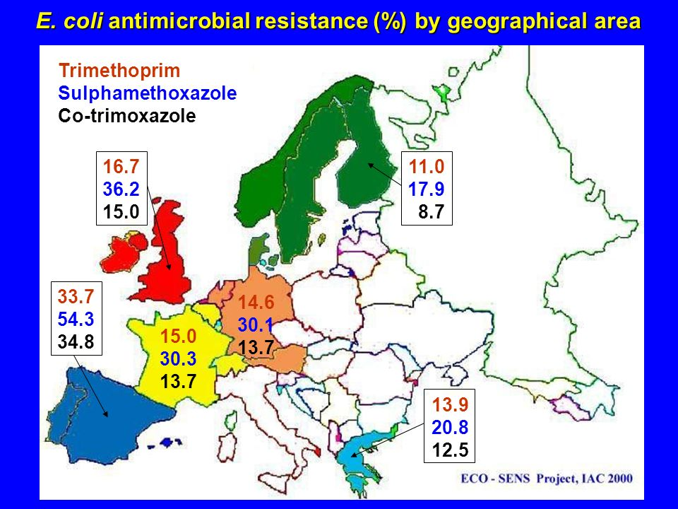 E. coli antimicrobial resistance (%) by geographical area