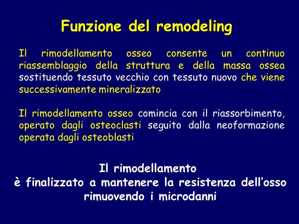 Funzione del remodeling