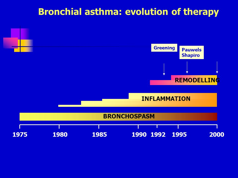 Bronchial asthma: evolution of therapy