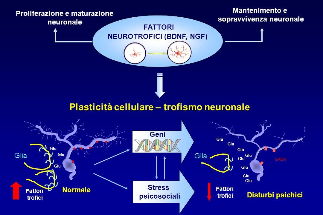 Plasticità cellulare – trofismo neuronale