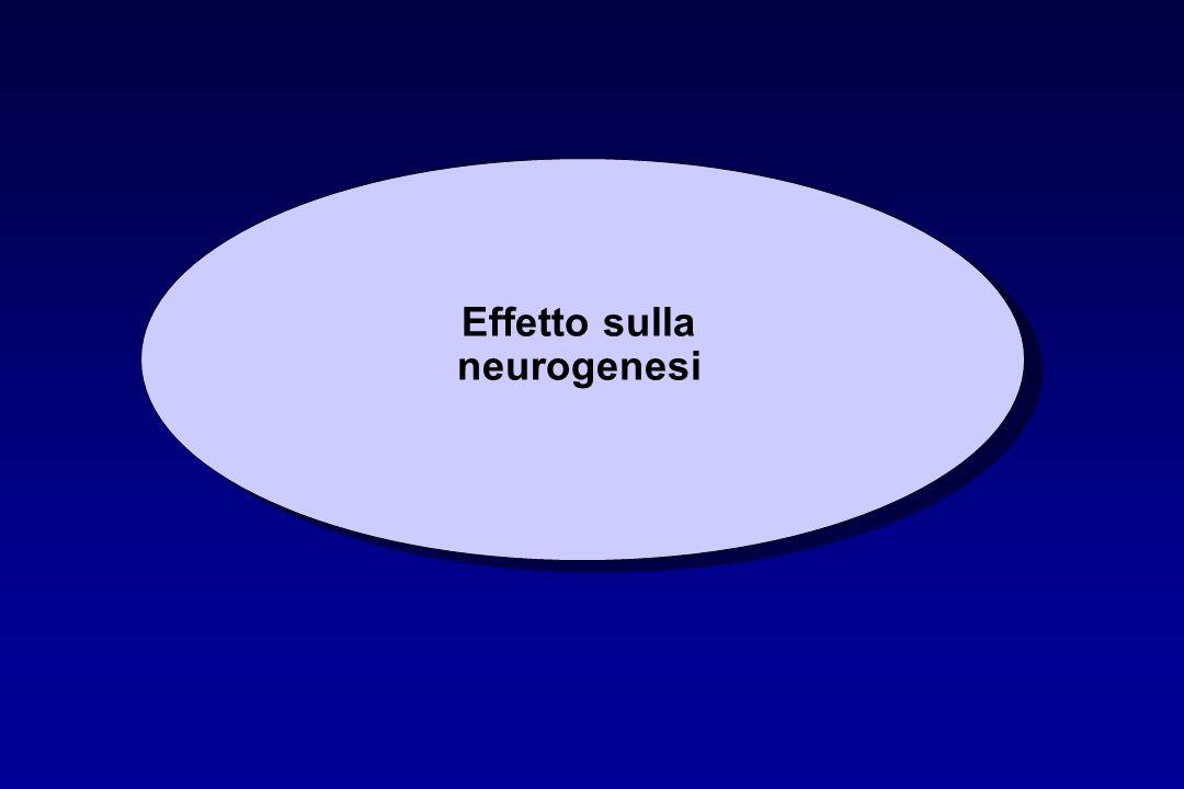 Effetto sulla neurogenesi