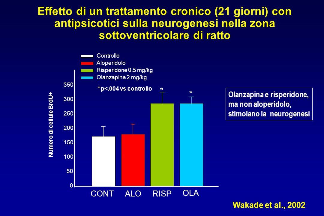 Effetto di un trattamento cronico (21 giorni) con antipsicotici sulla neurogenesi nella zona sottoventricolare di ratto
