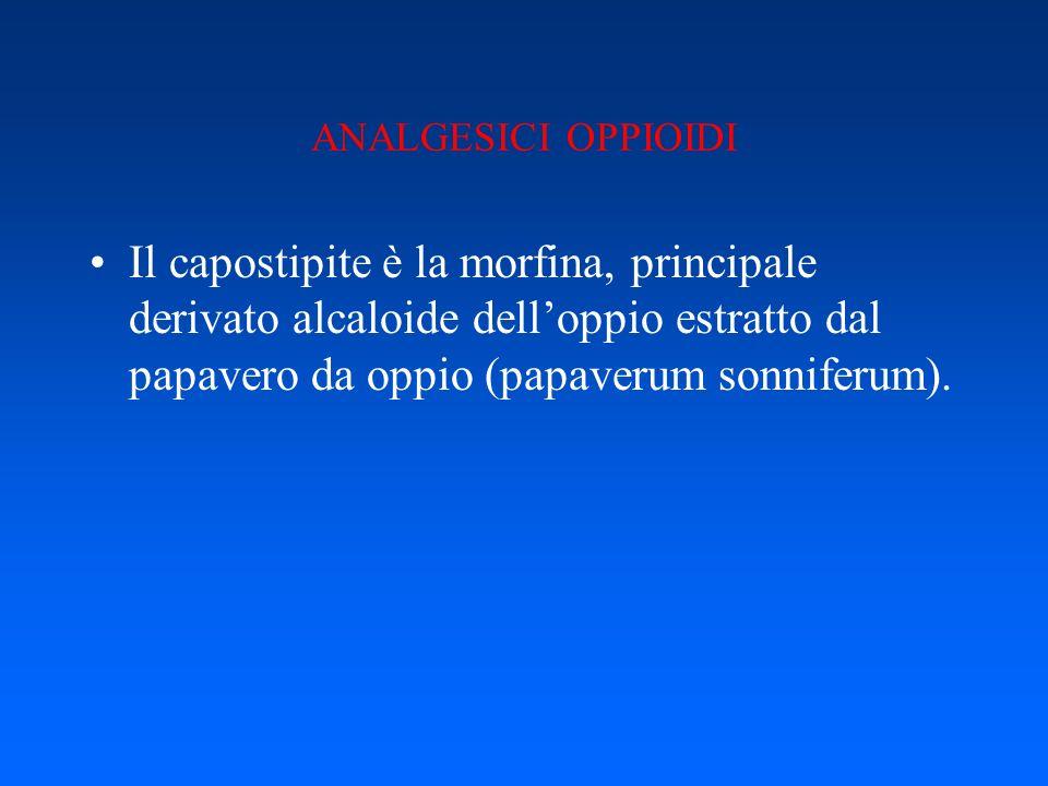 ANALGESICI OPPIOIDI Il capostipite è la morfina, principale derivato alcaloide dell'oppio estratto dal papavero da oppio (papaverum sonniferum).