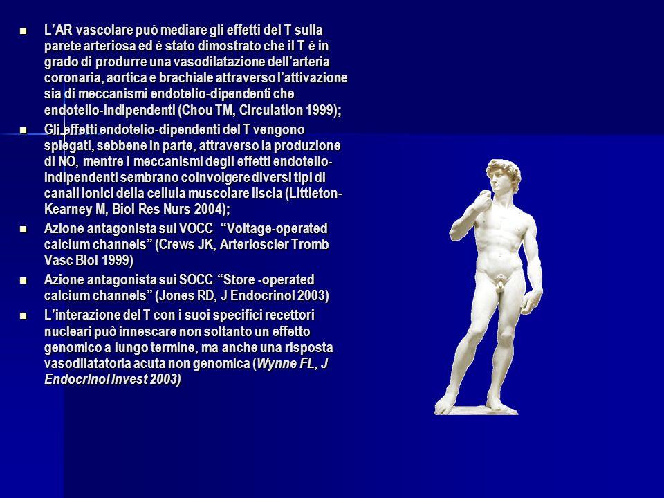 L'AR vascolare può mediare gli effetti del T sulla parete arteriosa ed è stato dimostrato che il T è in grado di produrre una vasodilatazione dell'arteria coronaria, aortica e brachiale attraverso l'attivazione sia di meccanismi endotelio-dipendenti che endotelio-indipendenti (Chou TM, Circulation 1999);