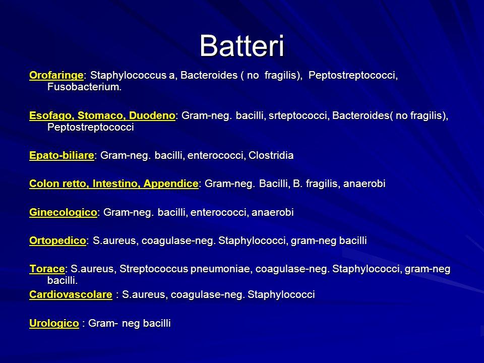 Batteri Orofaringe: Staphylococcus a, Bacteroides ( no fragilis), Peptostreptococci, Fusobacterium.