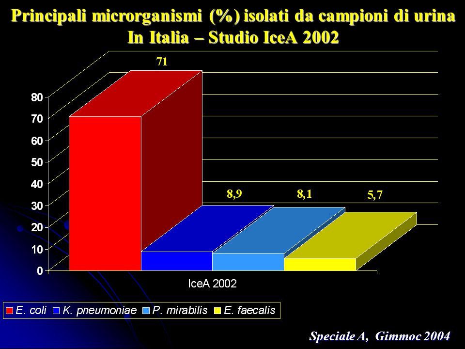 Principali microrganismi (%) isolati da campioni di urina