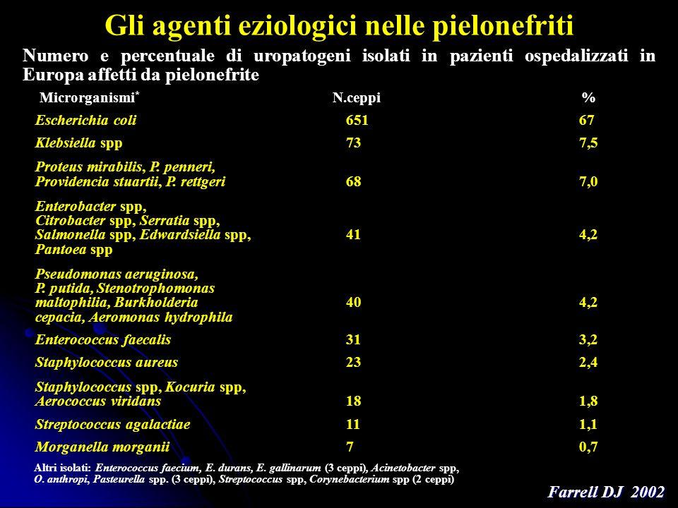 Gli agenti eziologici nelle pielonefriti