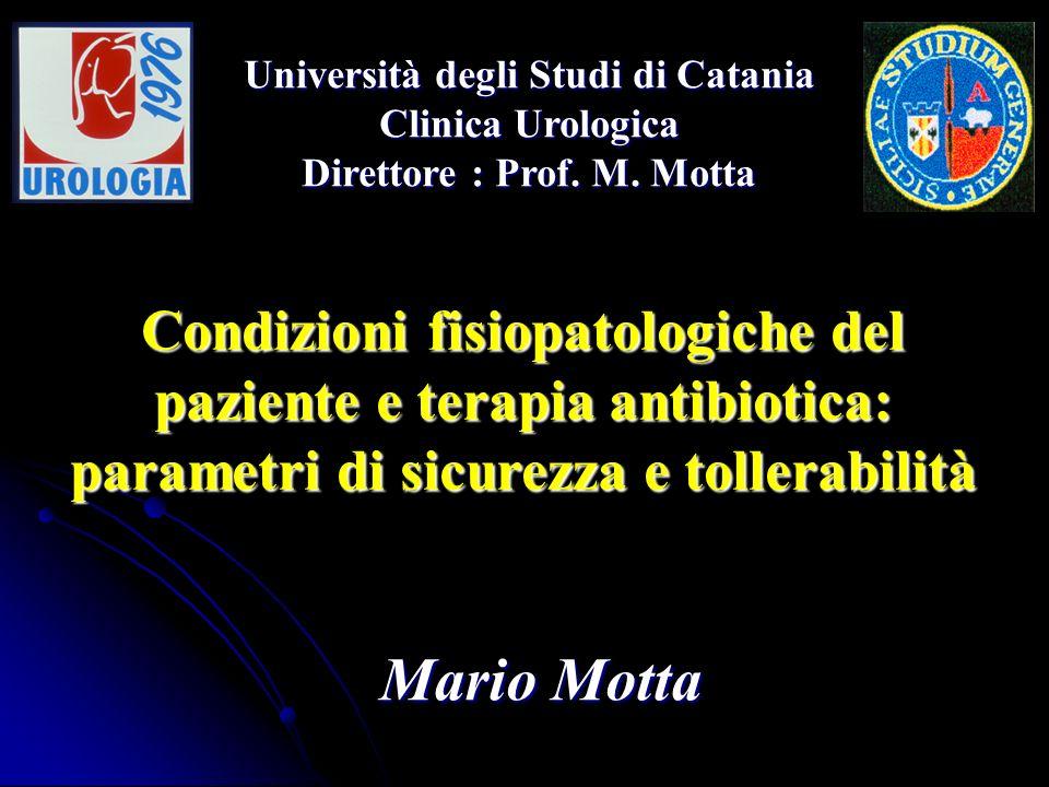 Università degli Studi di Catania Direttore : Prof. M. Motta