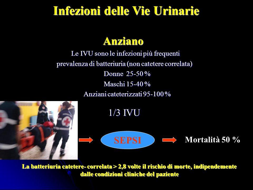 Infezioni delle Vie Urinarie