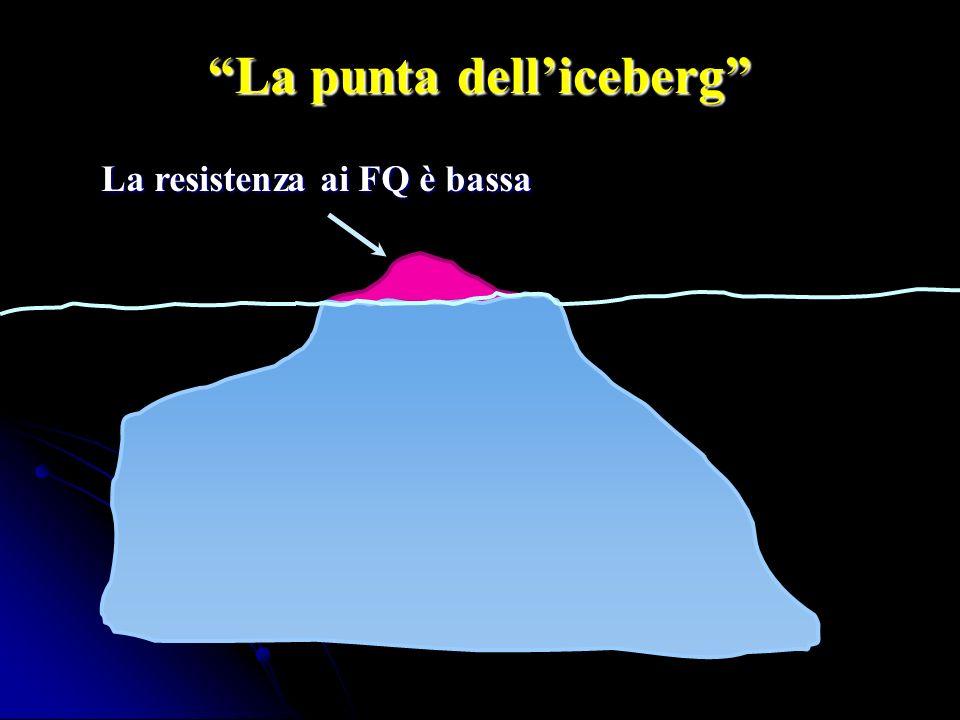 La punta dell'iceberg