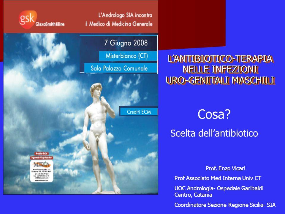 Cosa L'ANTIBIOTICO-TERAPIA NELLE INFEZIONI URO-GENITALI MASCHILI