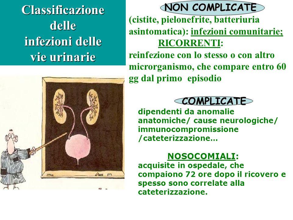 Classificazione delle infezioni delle vie urinarie