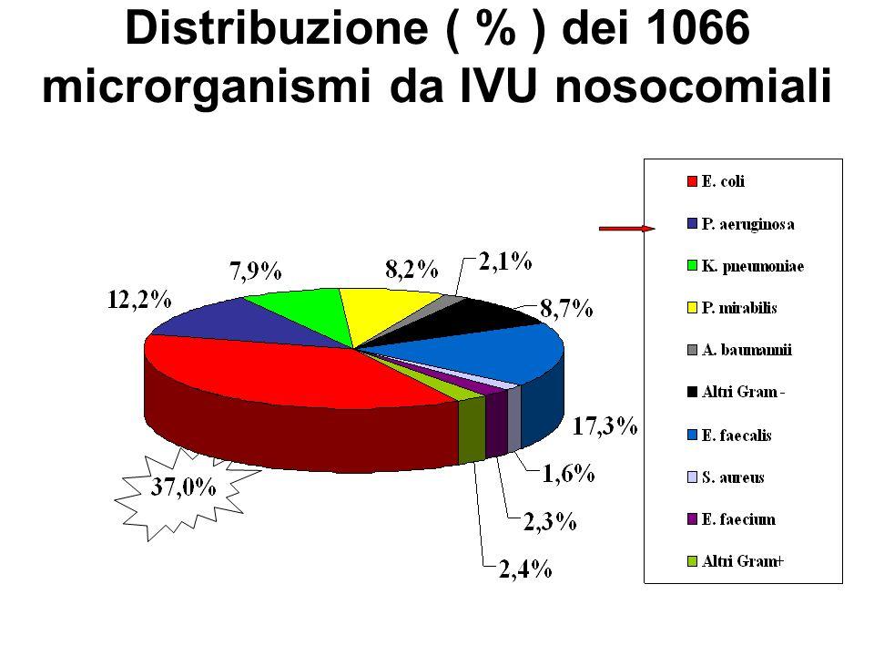 Distribuzione ( % ) dei 1066 microrganismi da IVU nosocomiali