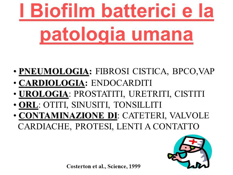 I Biofilm batterici e la patologia umana