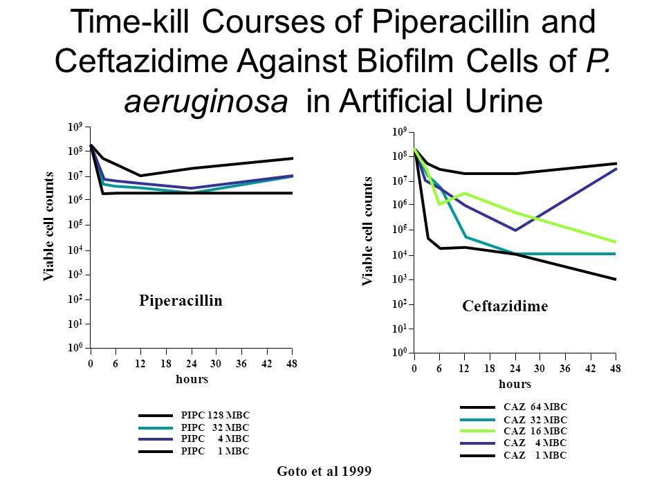 Time-kill Courses of Piperacillin and Ceftazidime Against Biofilm Cells of P. aeruginosa in Artificial Urine