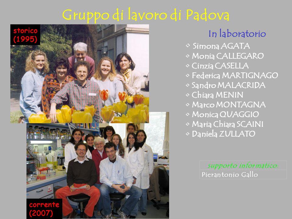 Gruppo di lavoro di Padova
