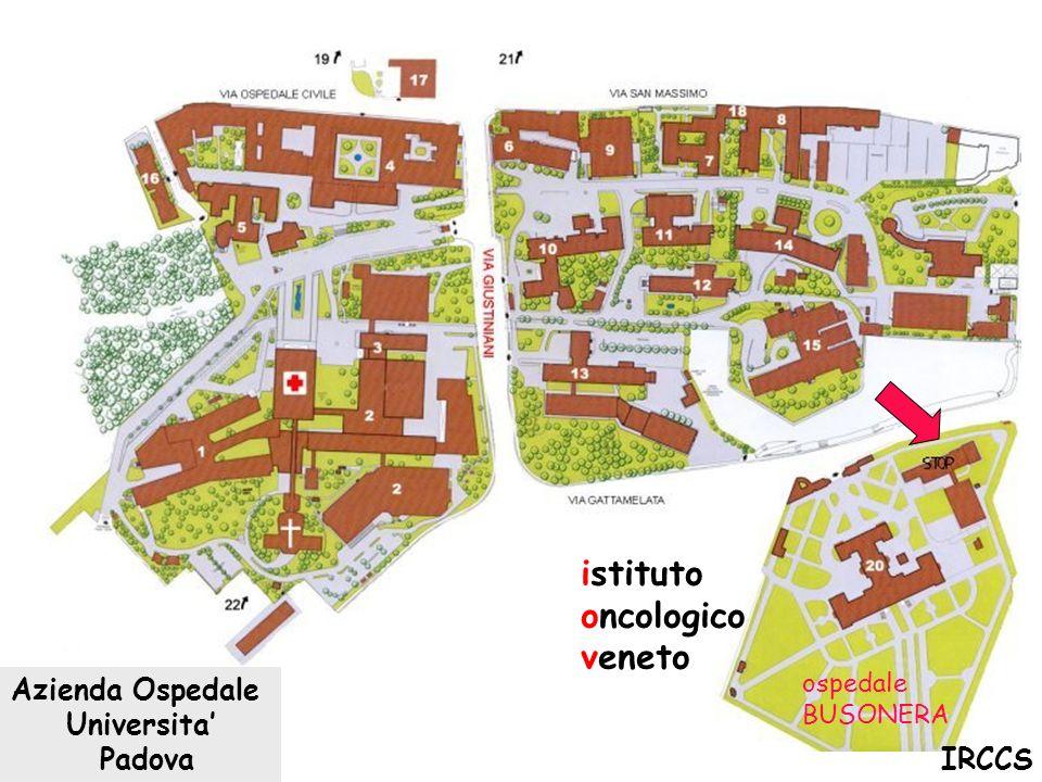istituto oncologico veneto Azienda Ospedale Universita' Padova IRCCS