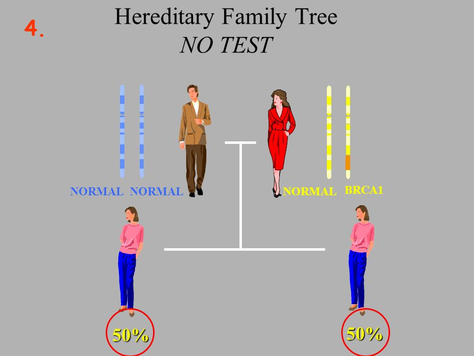 Hereditary Family Tree NO TEST