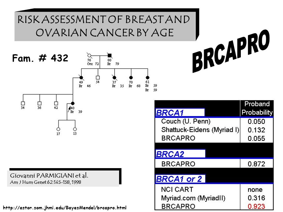 RISK ASSESSMENT OF BREAST AND