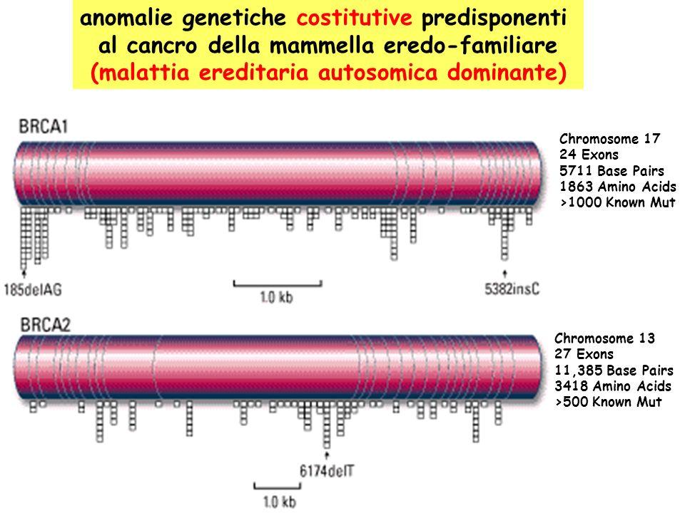 anomalie genetiche costitutive predisponenti