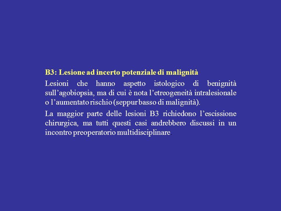 B3: Lesione ad incerto potenziale di malignità