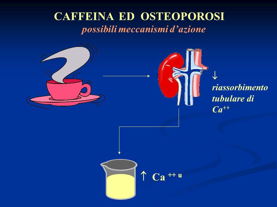 CAFFEINA ED OSTEOPOROSI possibili meccanismi d'azione
