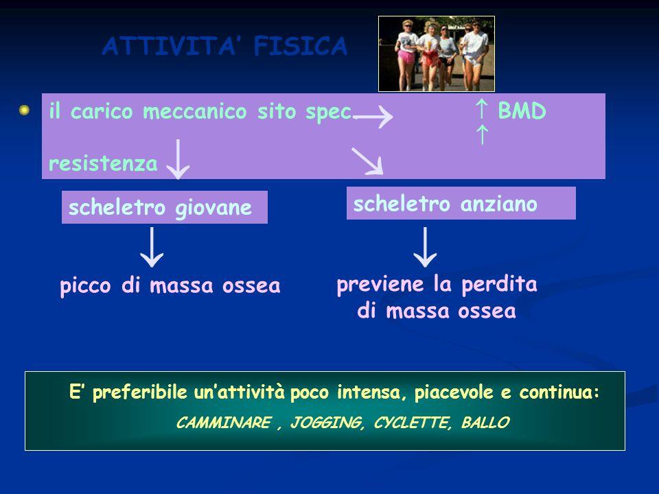      ATTIVITA' FISICA il carico meccanico sito spec.  BMD