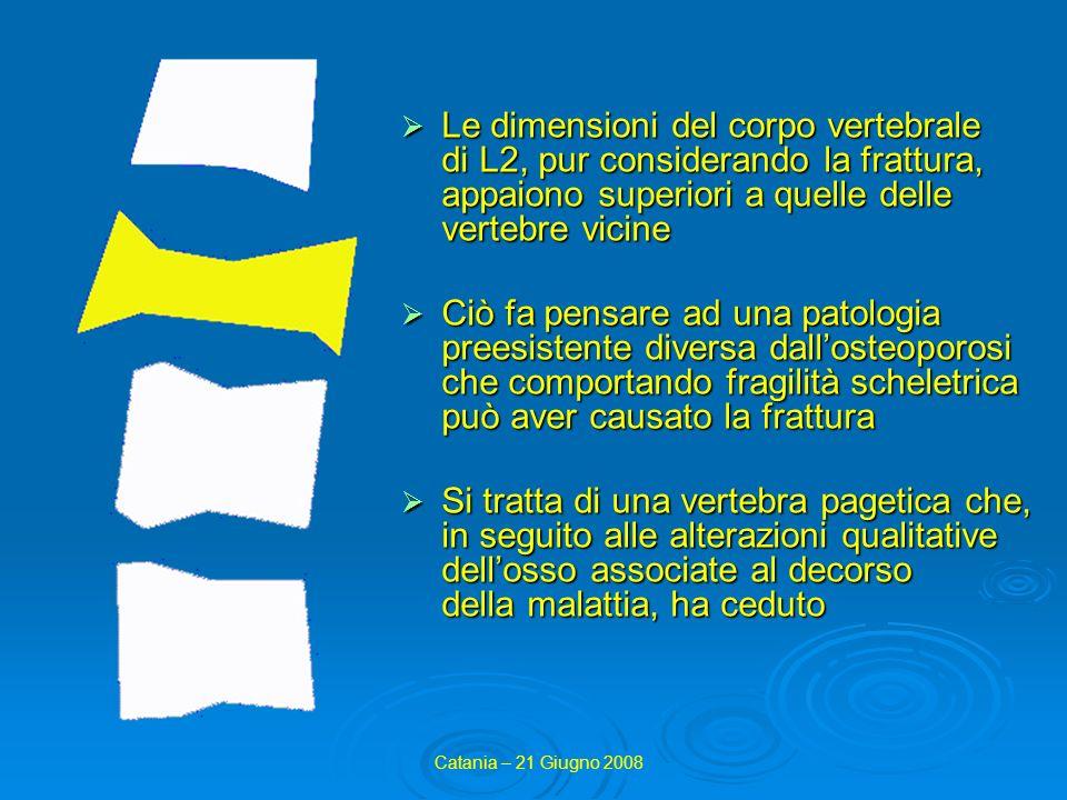 Le dimensioni del corpo vertebrale di L2, pur considerando la frattura, appaiono superiori a quelle delle vertebre vicine
