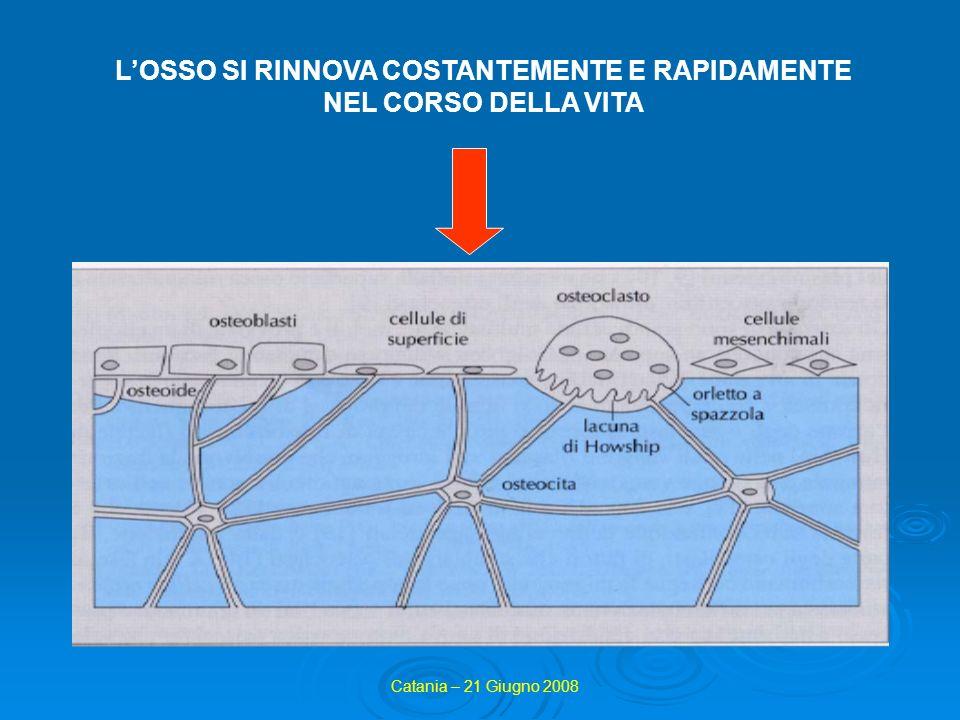 L'OSSO SI RINNOVA COSTANTEMENTE E RAPIDAMENTE