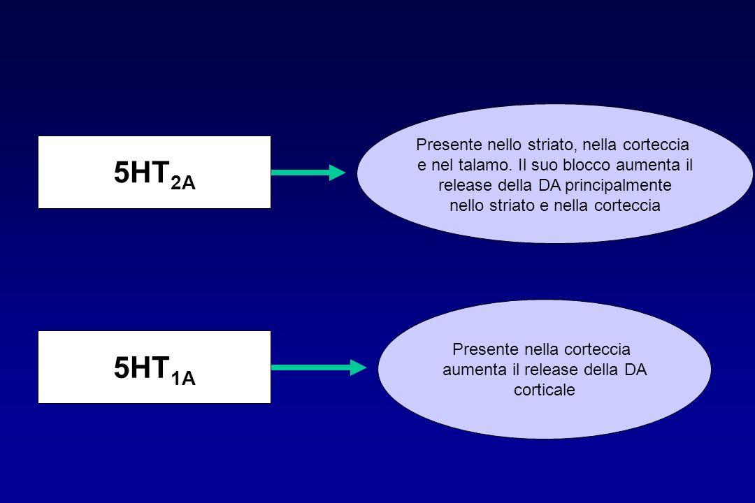 5HT2A 5HT1A Presente nello striato, nella corteccia